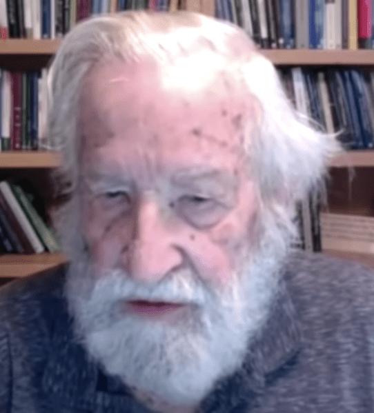 Chomsky's toespraak voor Rojava eindigde als een onverwachte boodschap aan de wereld…