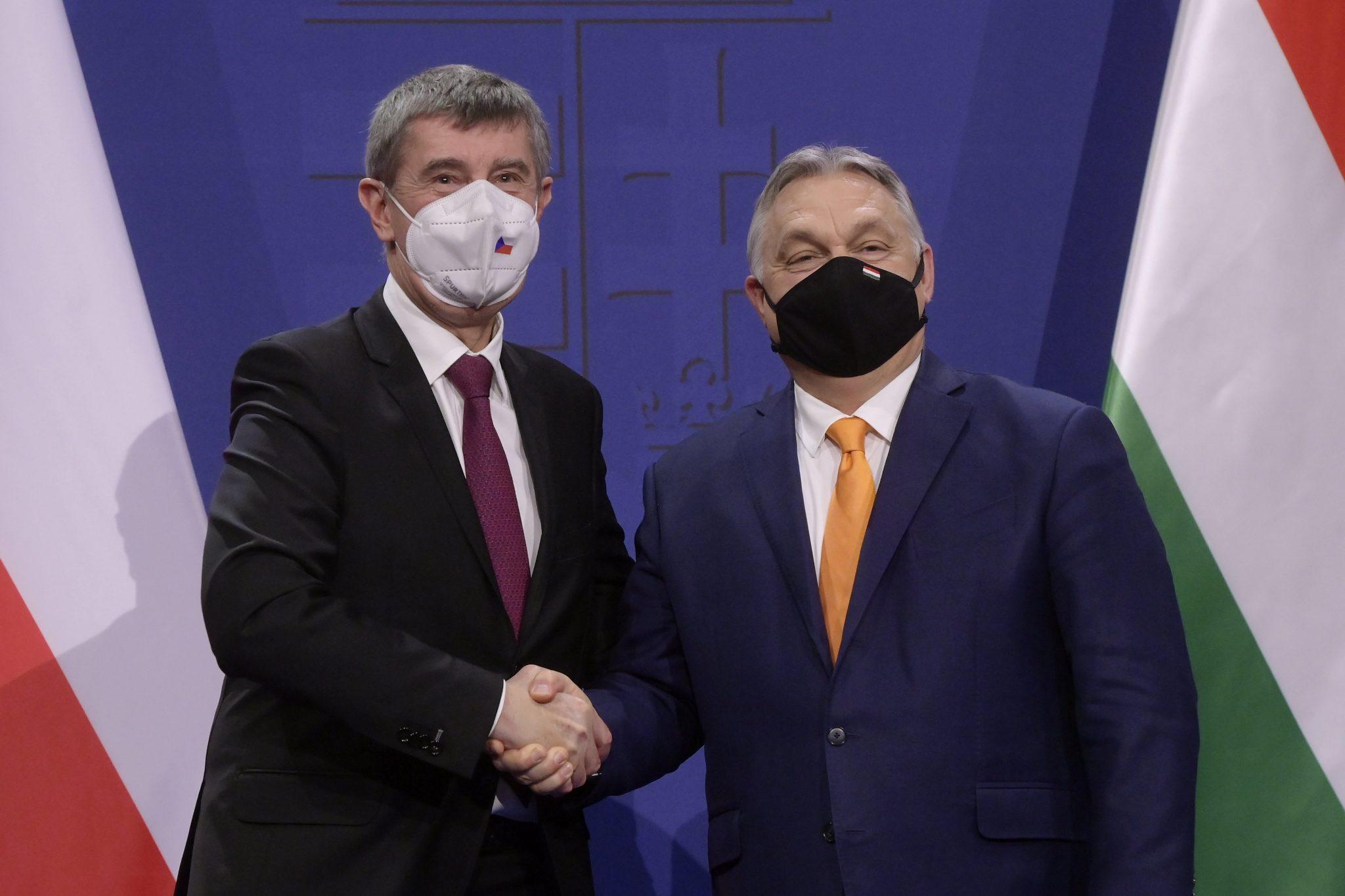 EU-fracties, let op uw schapen